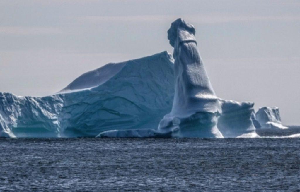 Un pêcheur pensait avoir trouvé un phoque sur un iceberg jusqu'à ce qu'il regarde de plus près !