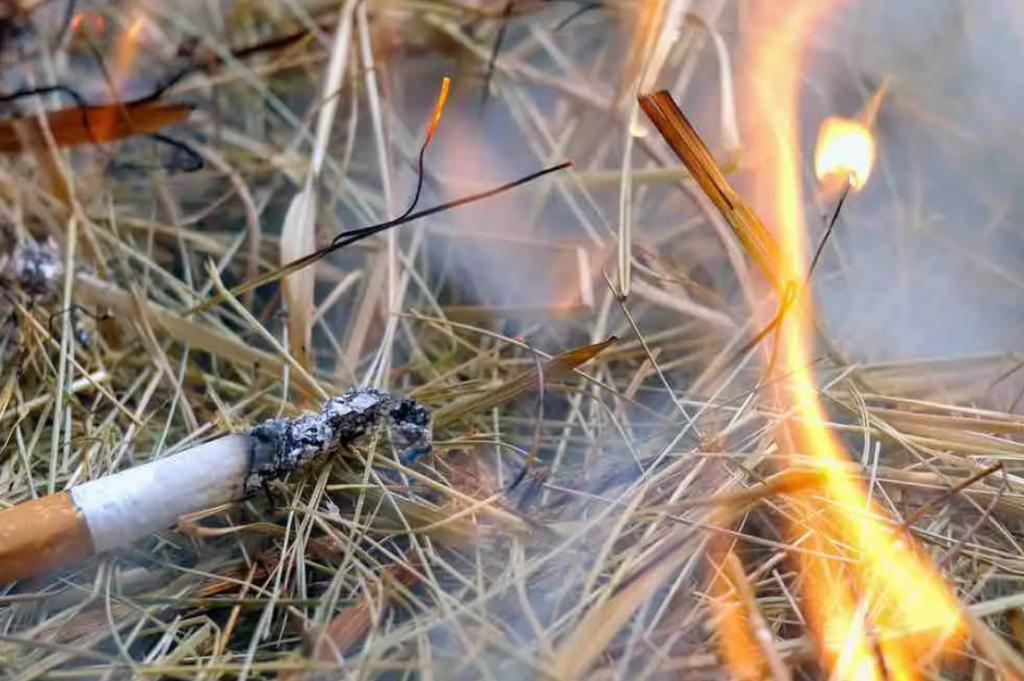 « Ce petit geste qui fait de vous un gros con » : le coup de gueule justifié des pompiers de l'Hérault